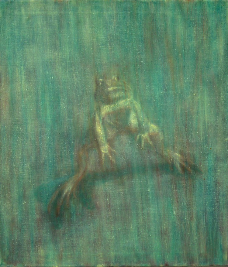 Žába, 70x80c
