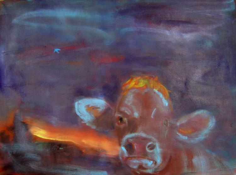 Kráva, 80x110cm