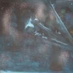 labutě, 60x70cm