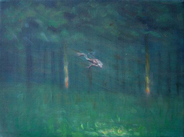 Letící žába, 30x40cm