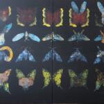metamorfoza, 150x240cm